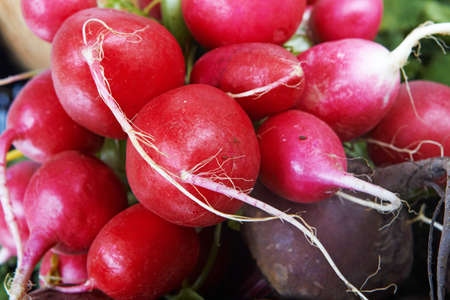 Close-up of a big bunch of fresh beetroot and radish .