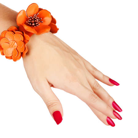 unas largas: Primer plano de la mano de la mujer joven con la manicura larga roja con la mandarina pulsera de cuero de color naranja sobre fondo blanco