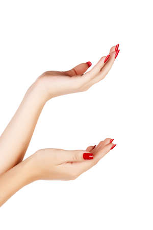 closeup of hands of a young woman with long red manicure on nails against white background Stock Photo - 13819828