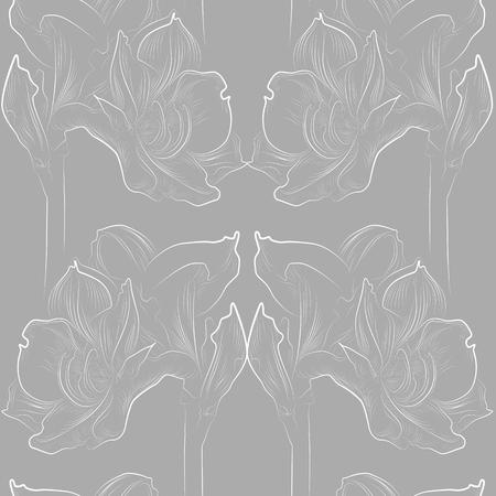 Modèle sans couture d'amaryllis délicat en gris et blanc