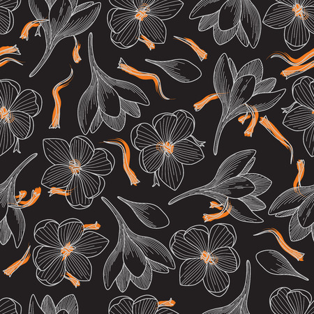 Detailed Orange Saffron and Crocus Flowers Line Drawing Seamless Pattern on Black Background