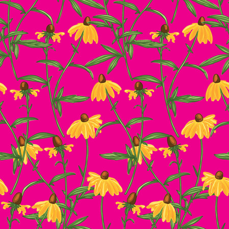 Colorful Hand Drawn Rudbeckia Flowers Line Drawing Seamless Pattern on Pink Background. Wallpaper Design Standard-Bild - 124652094