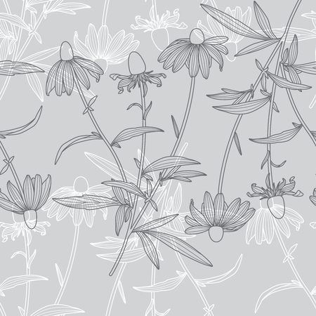 Monochrome Floral Rudbeckia Flower Line Drawing Seamless Pattern on Grey Background Standard-Bild - 124652095