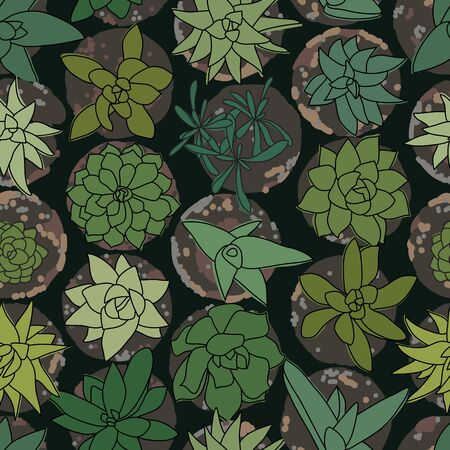 Green Succulents in Pots top-view Vetor Drawing Seamless Pattern Illustration