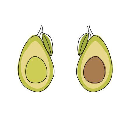 Avocado Halves Vector Design on White Background
