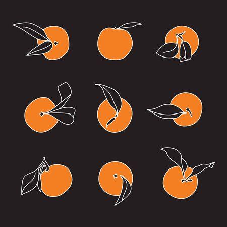 Orange Tangerine Selection Minimalist Vector Designs on Black