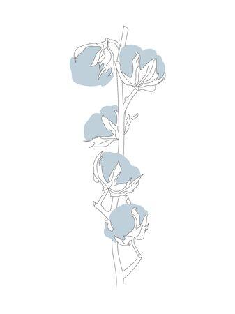 Light Blue Cotton Plant Branch Line Drawing on White Illustration