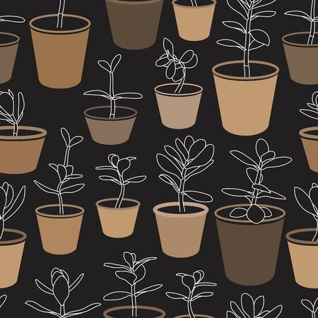 Jade Plants in Pots Vector Drawing Seamless Pattern. Money Plant Design