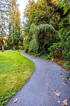 A winding path in a park with trees, bushes, green grass and red flower beds, and a bench