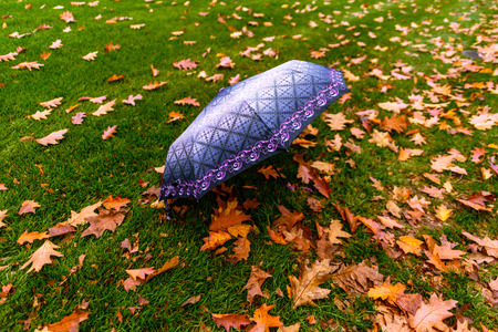 open blue umbrella lies on green grass with fallen red leaves
