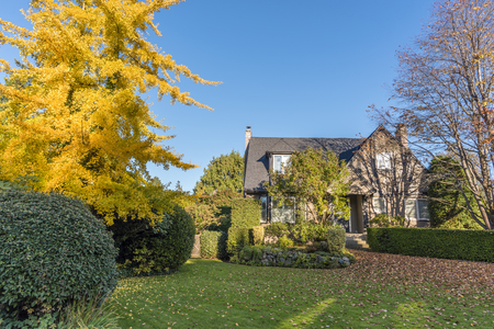 green, grassy lawn in front of a two-story house, green bushes, a tree with yellow leaves, a clear blue sky Reklamní fotografie