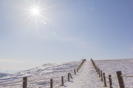 In the winter Reklamní fotografie
