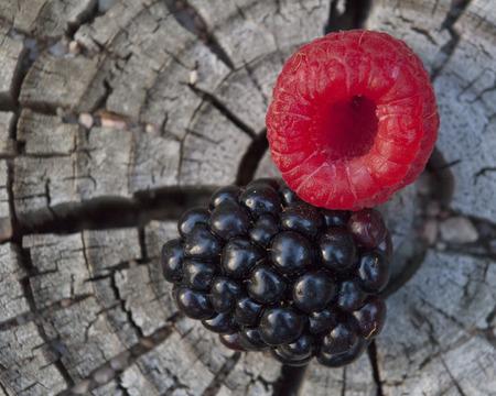 Berries arranged on wooden tree stump