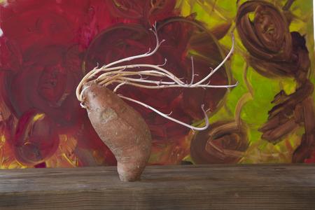 Sweet Potato woman blowing in the wind