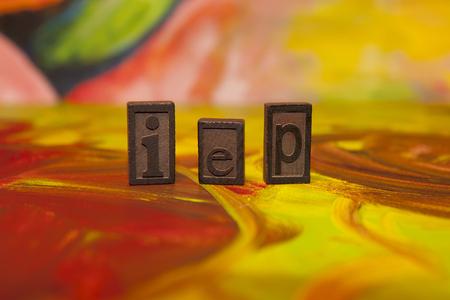 individualized: IEP Individualized Education Plan in vintage blocks on canvas