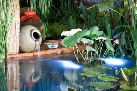 Beautiful and refreshing landscaping garden produced by professional designers