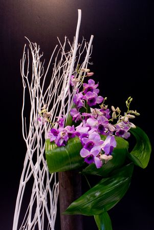 The close up observation of beautiful flowers in details. photo