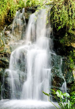 refreshing waterfall from mountain with green plant Stock Photo
