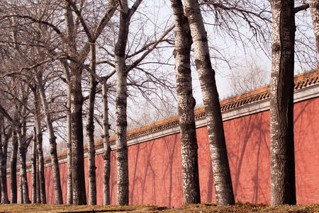 rampart: dry tree and red rampart in Beijing winter