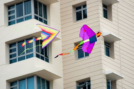 dragonfly Kite flying in the residential area photo
