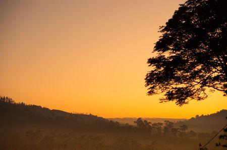 Golden sky in early morning sunrise light photo