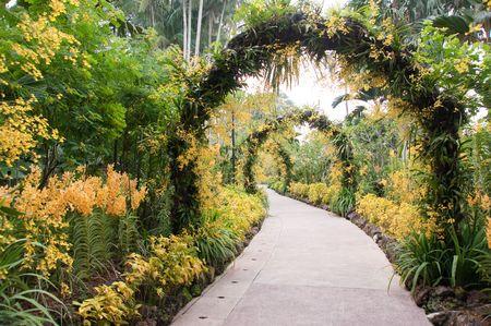 シンガポール国立蘭園 @ シンガポール植物園