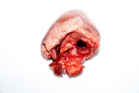 raw animal heart isolated on white background photo