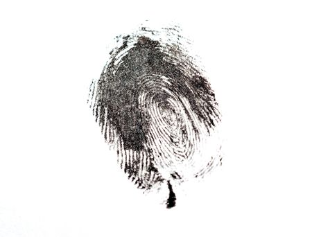 detail of black fingerprint isolated on white photo