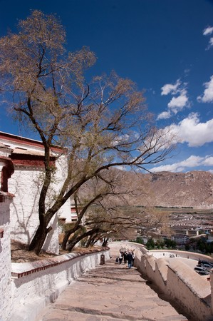 close view of the potala palace in tibet of china photo