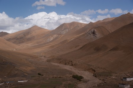 wildness: yellow and brown wildness land in tibet of china