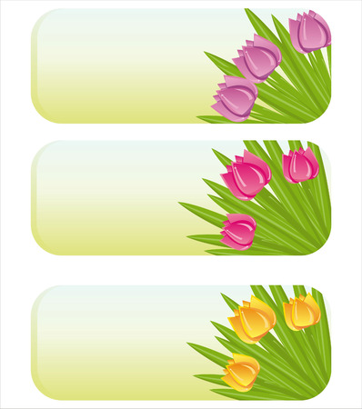 tulips in green grass: set of 3 spring banners with tulips
