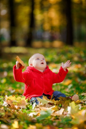 baby girls smiley face: Cheerful baby in a red dress playing with yellow leaves. Child crawls outdoor autumn park. Autumn is time of bright colors. Yellow leaves on the green grass. Stock Photo