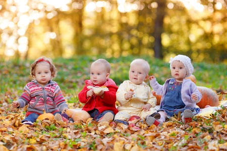 Four cheerful little baby sitting on yellow autumn leaves. Children playing in autumn park. Foto de archivo