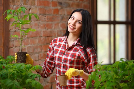 the existing: More than just existing. Shot of a cheerful smiling female brunette posing holding a tomato plant looking to the camera