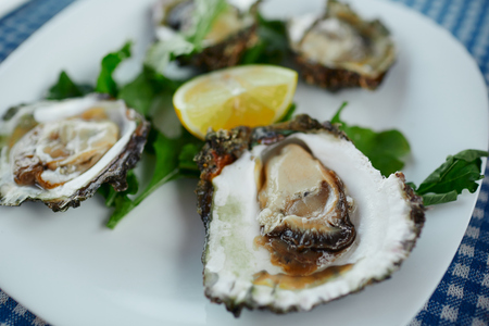 Fresh oysters on a white plate with green salad and lemon on a blue tablecloth Фото со стока