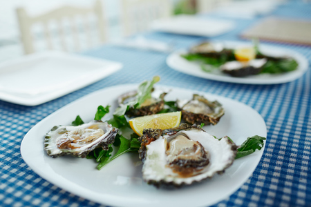 Fresh oysters on a white plate with green salad and lemon on a blue tablecloth Banco de Imagens