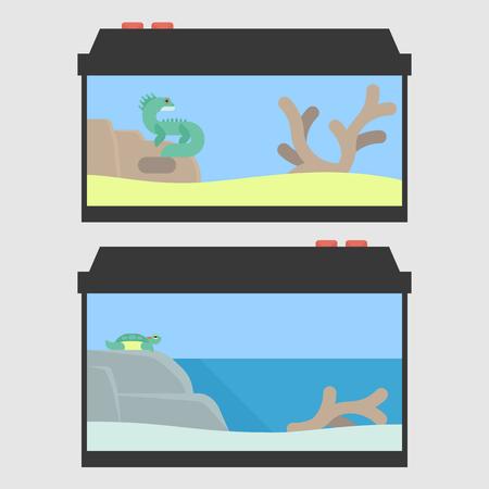 terrarium: Lizard terrarium and turtle paludarium in flat style. Vector illustration of reptile tanks for pet shop.