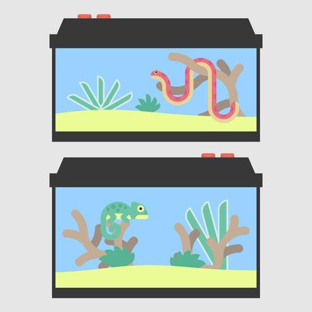 vivarium: Terrariums for a snake and chameleon in flat style. Vector illustration of reptile tanks for pet shop. Illustration
