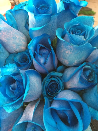 blue: Beautiful blue roses bouquet