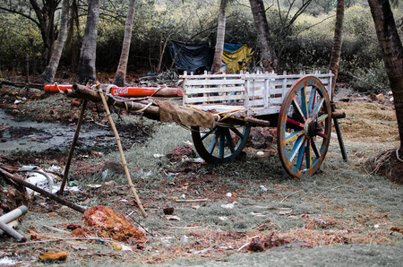 Old wooden Bullock Cart Parked trees and grass in the background