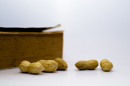 An Old Book in the Background and Ground Nuts in the Foreground symbolizing food and education Stock Photo
