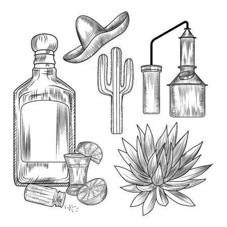 Set of tequila. Shot glass and bottle tequila, salt, lime, blue agave, copper cube, sombrero, cactus. Engraving vintage style. Vector illustration. Vector Illustration