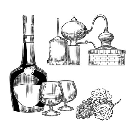 Set of cognac in hand drawn style on white background. Bottle of cognac, snifter, bunch of grapes, alembic. Element for bar menu design. Alcohol ink. Engraving vintage isolated vector illustration. Vecteurs