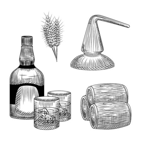 Set of whiskey production process in hand drawn style. Bottle of whiskey, glass, barrel, wheat, distillation. Element for bar menu design. Ink sketch. Engraving vintage isolated vector illustration.