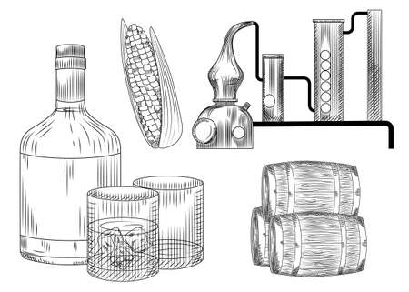 Set of bourbon. Glass and bottle, corn, barrel, alembic, ice. Engraving vintage style vector illustration.