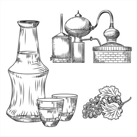 Set Tsipouro Greek alcohol on white background. Glass, bottle, grape, alembic. Engraving vintage style black outline vector illustration.