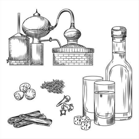 Set Ouzo Greek alcohol on white background. Glass, bottle, cinnamon, cloves, anise, nutmeg, alembic. Engraving vintage style black outline vector illustration.