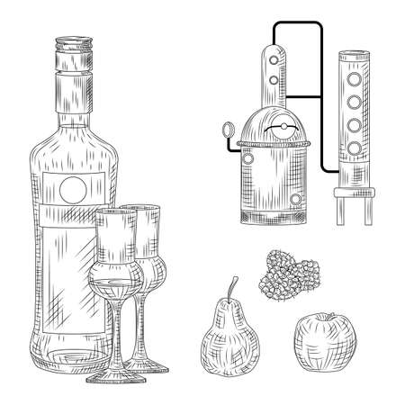 Set of schnapps. Germany traditional alcohol drink. Bottle, glass, alembic, raspberry, apple, pear Vintage engraved style Vector illustration