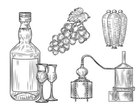Set of Pisco. Peru of traditional alcohol drink. Bottle, glass, alembic, grape, jug. Vintage engraved style Vector illustration Vecteurs