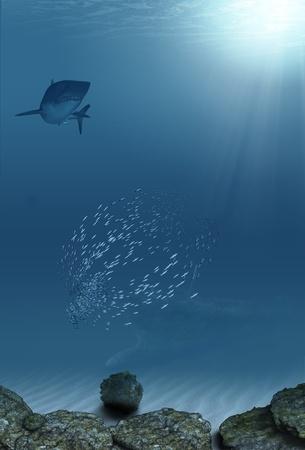Uder the sea photo
